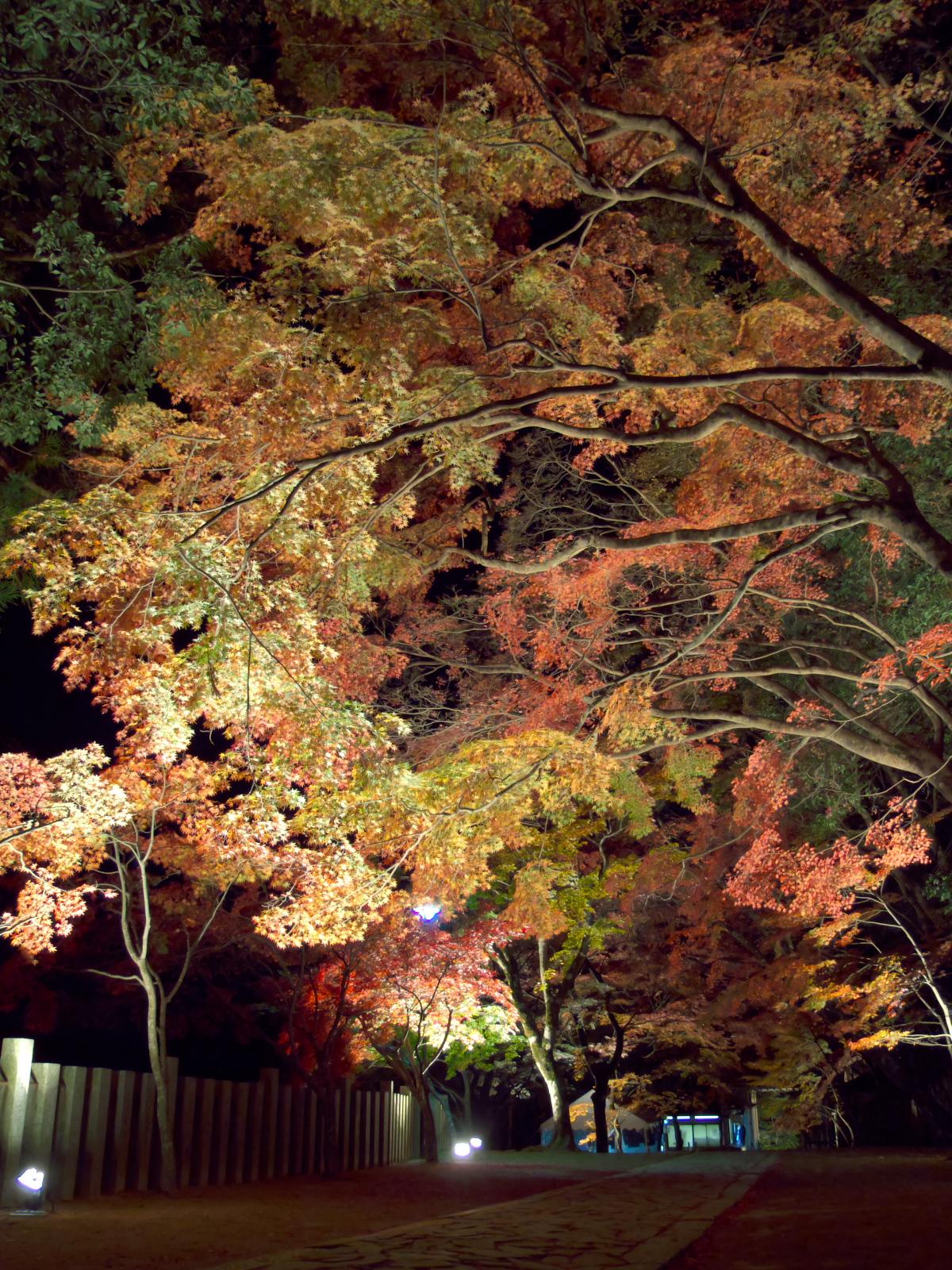 http://www.eigenji-t.jp/admission/images/DSCF2191.jpg